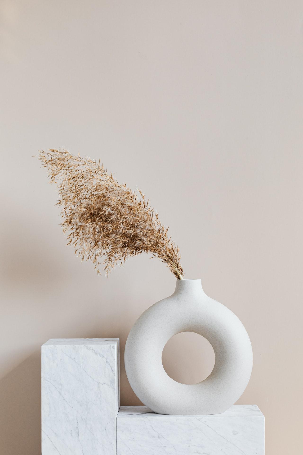 bruine plant in witte vaas op blokvormig voetstuk